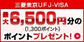 三菱東京UFJ-VISA